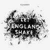 Stiri din Muzica - Piesa noua de la PJ Harvey - Written On The Forehead